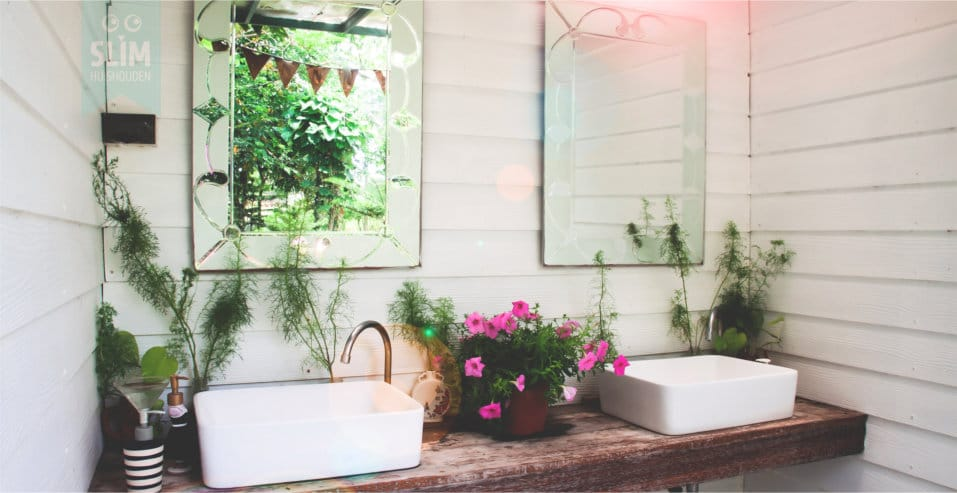 Welke planten zijn geschikt voor de badkamer?
